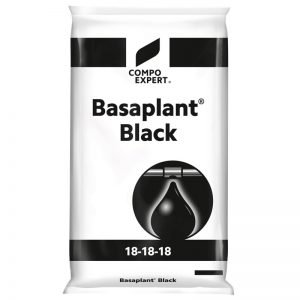 161669 bpl blackagroavella