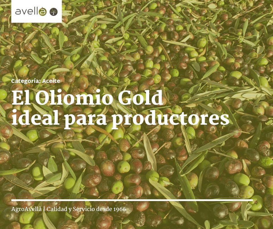 agro avella noticia facebook (3)