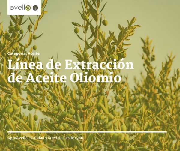 agro avella noticia facebook