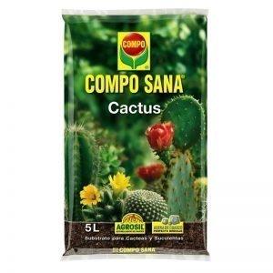cs cactus 5lagroavella